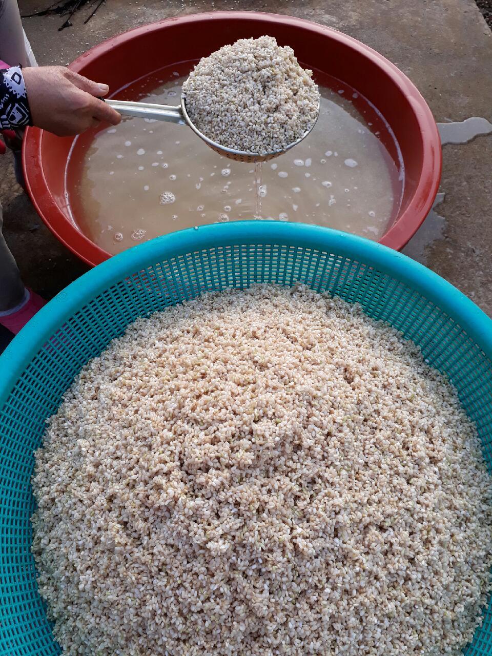 쌀씨어 거르기.jpg